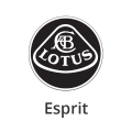 Katalysator Lotus Esprit