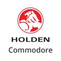 Katalysator Holden Commodore