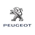 Krümmer Peugeot