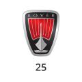Katalysator Rover 25