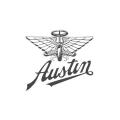 Katalysator Austin