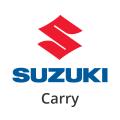 Katalysator Suzuki Carry