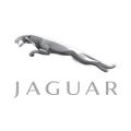 Partikelfilter Jaguar