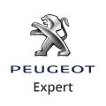 Partikelfilter Peugeot Expert